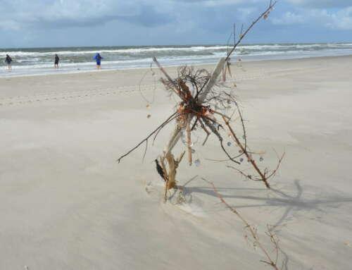 Mit Gott am Strand ohne Plan